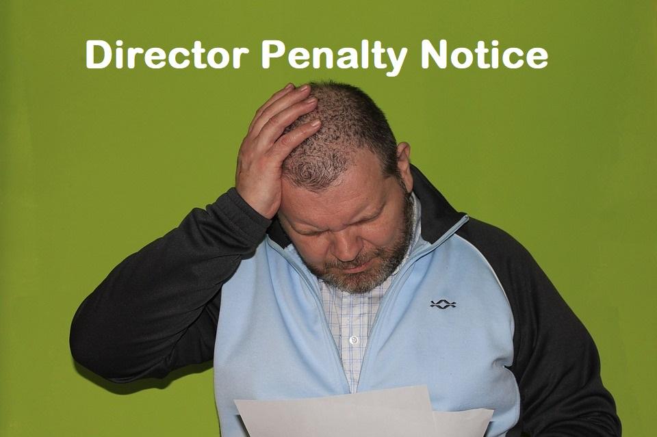 Director Penalty Notice (DPN)